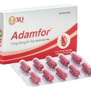 Adamfor-Xuân Quang
