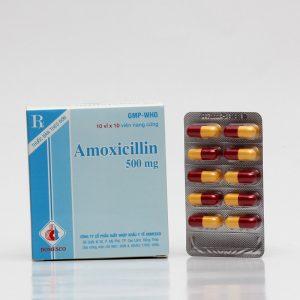 Amoxicillin 500Mg Domesco
