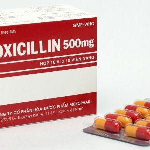 Amoxicillin 500Mg Mekophar