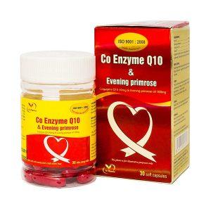 Co Enzyme Q10 - Hỗ Trợ Điều Trị Tim Mạch (Hộp)