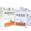 Sachet. CEFIXIM 100 - CGP (10 gói x 1.5g)