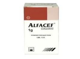 ALFACEF (Hộp 1 lọ / Hộp 10 lọ x 1 g)